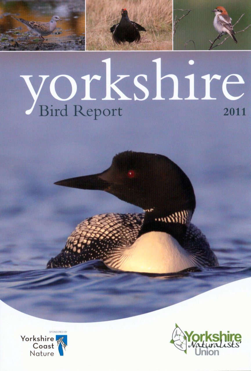 Yorkshire Bird Report 2011