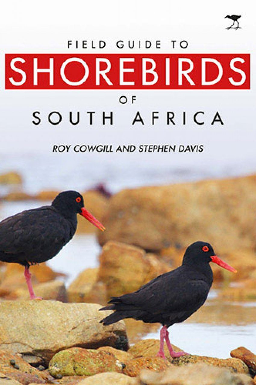 Field Guide to Shorebirds of South Africa