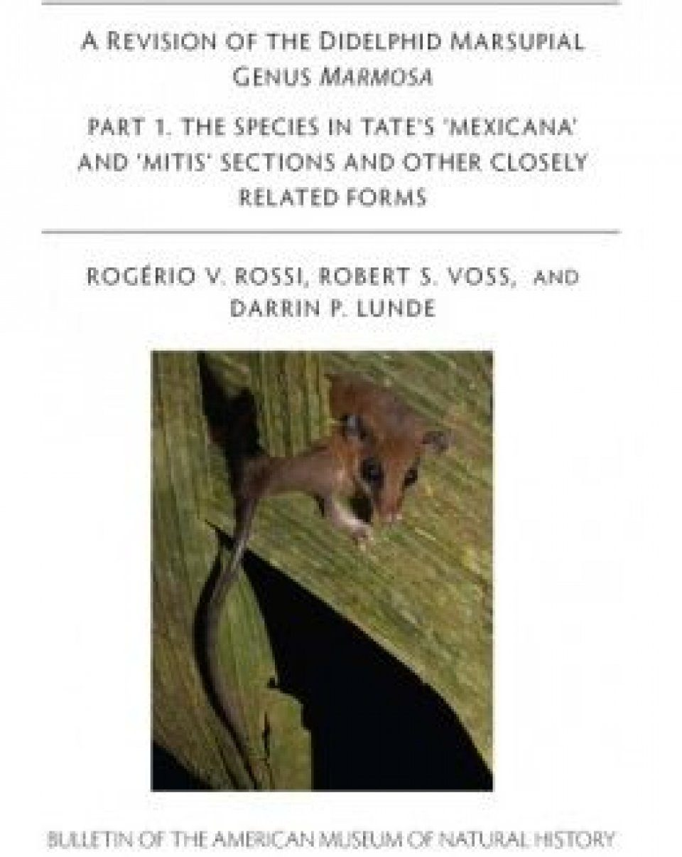 A Revision of the Didelphid Marsupial Genus Marmosa Part 1. The Species in Tate's