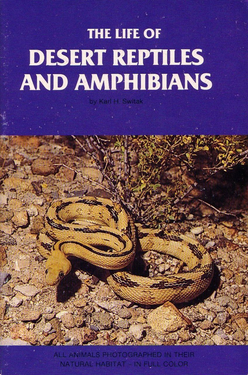 The Life of Desert Reptiles and Amphibians