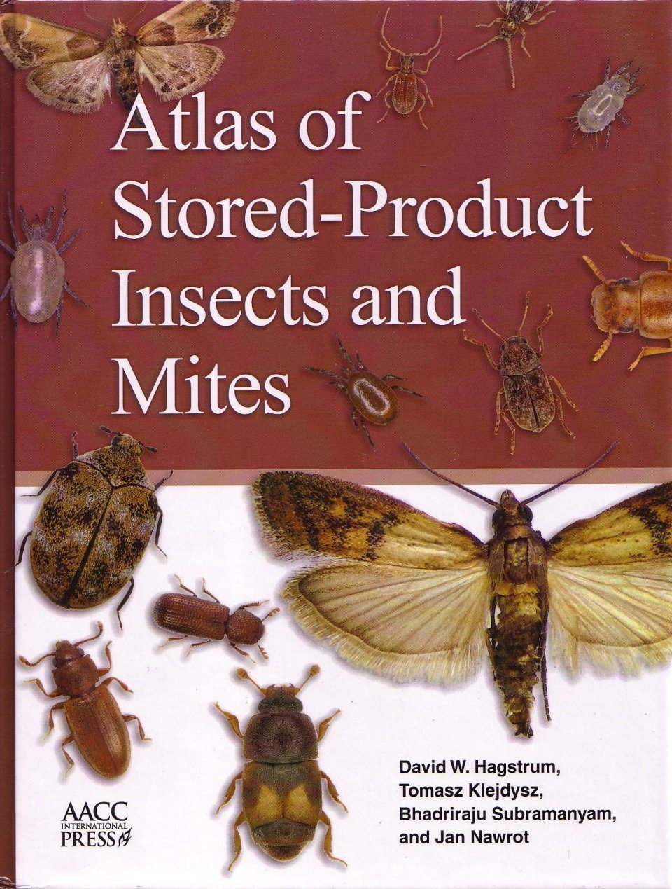 stored products pests