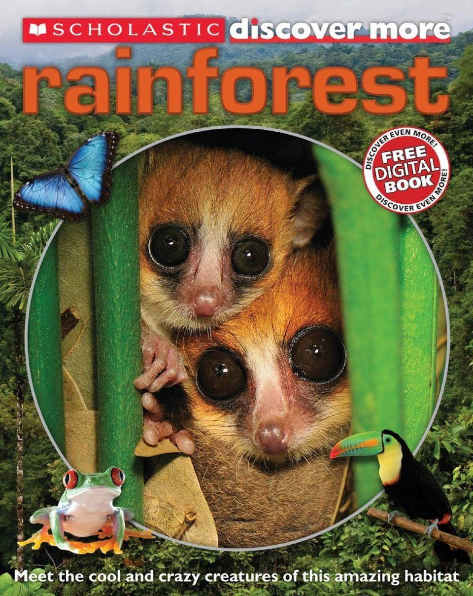 Discover More: Rainforests