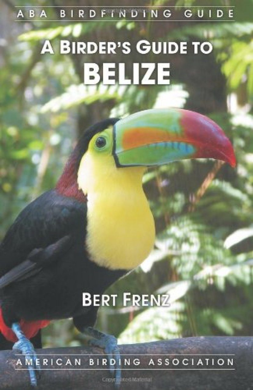 A Birder's Guide to Belize
