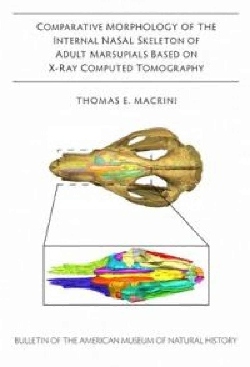Comparative Morphology of the Internal Nasal Skeleton of Adult Marsupials Based on X-Ray Computed Tomography