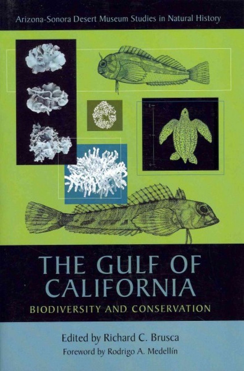 The Gulf of California