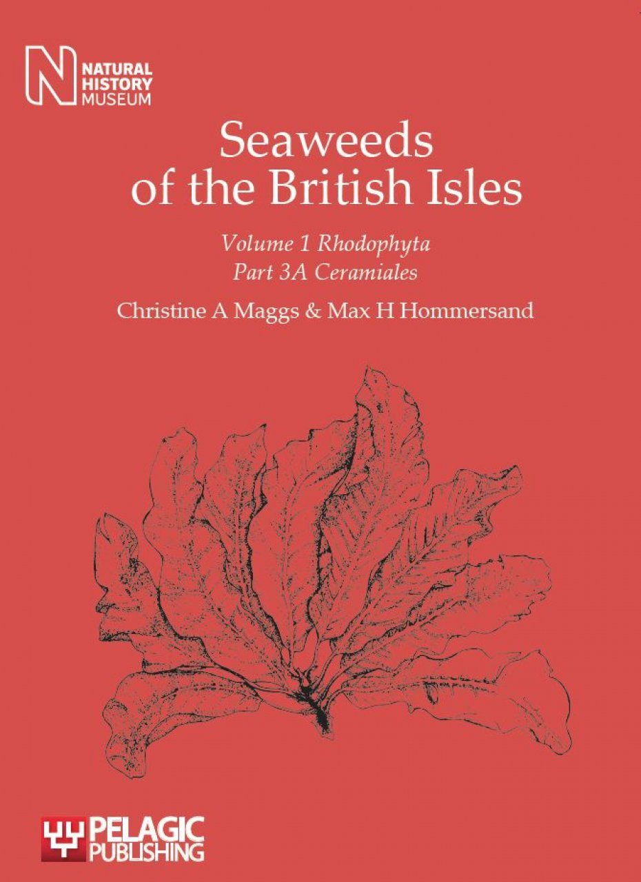Seaweeds of the British Isles, Volume 1 Part 3a