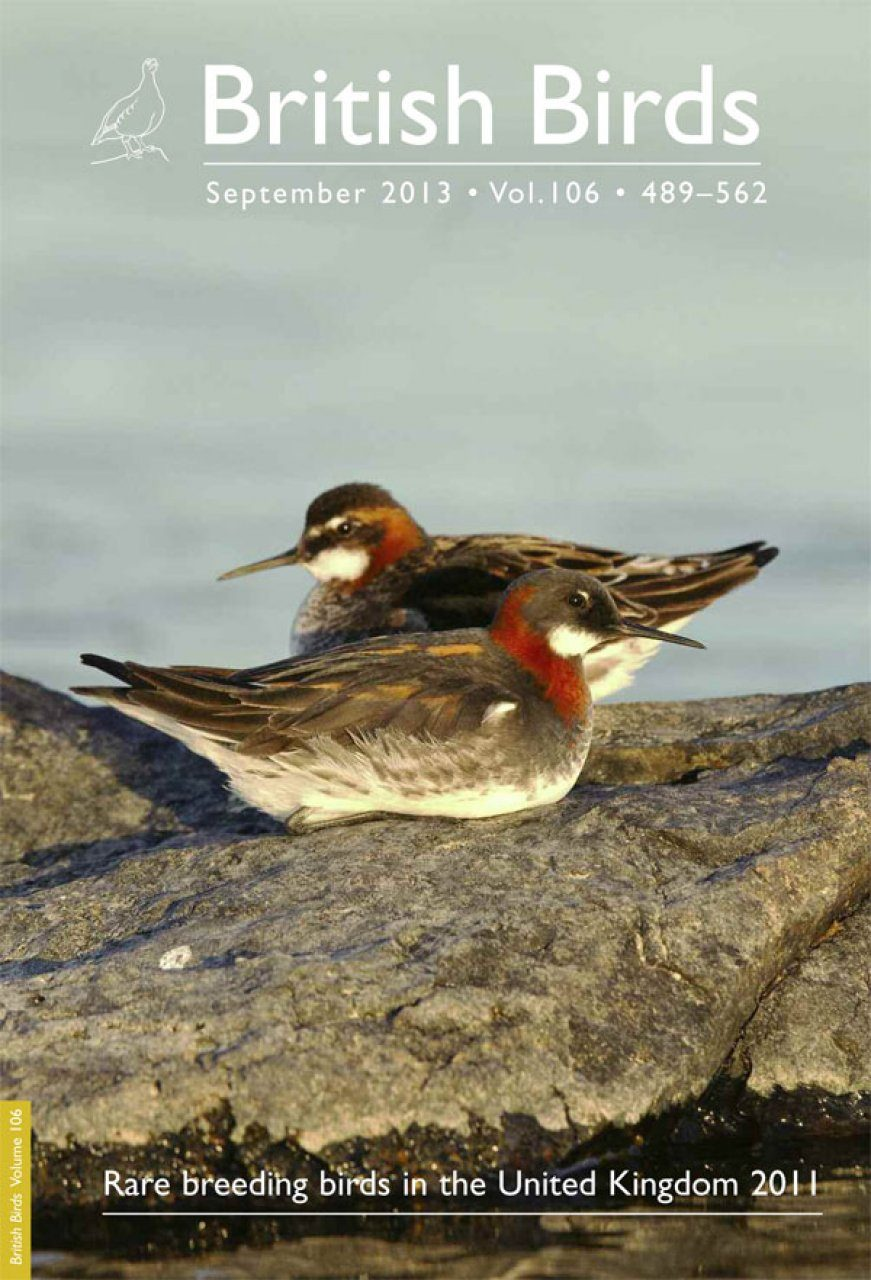 Rare Breeding Birds in the UK in 2011