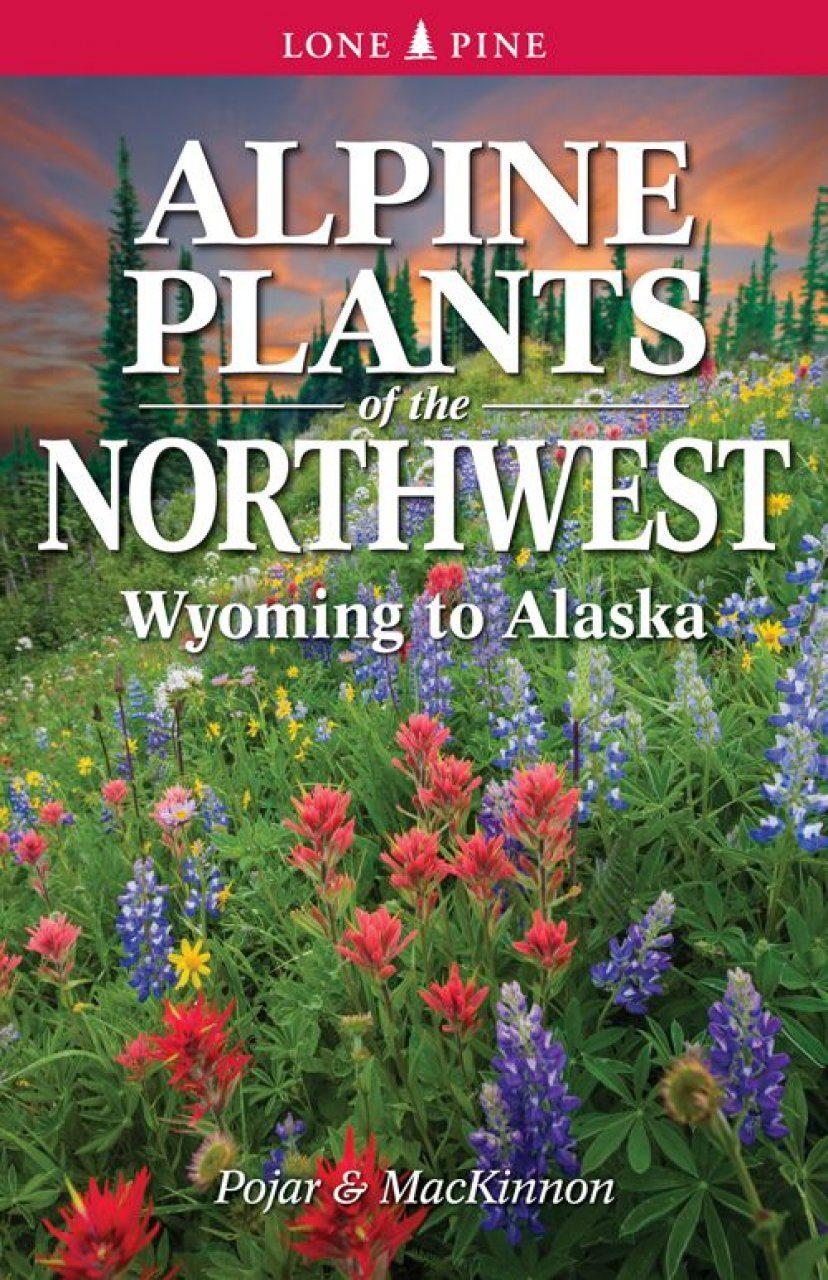 Alpine Plants of the Northwest