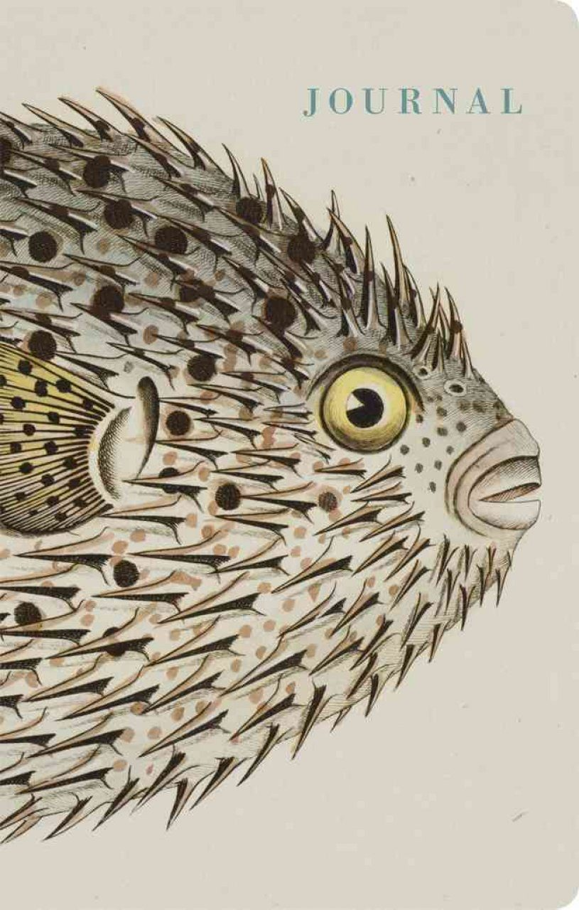 Natural Histories Journal: Fish