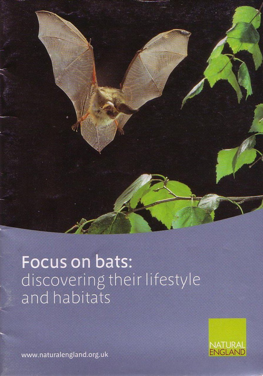 Focus on Bats