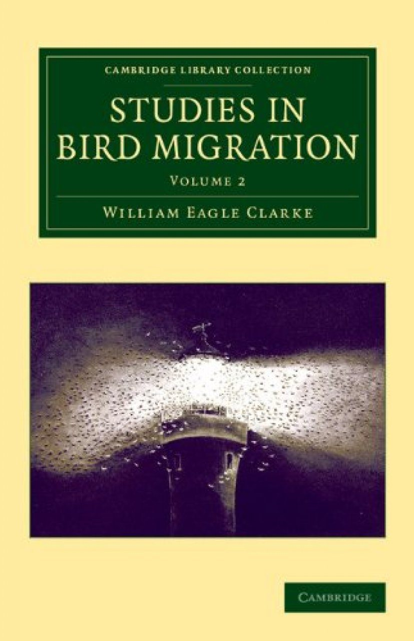Studies in Bird Migration, Volume 2
