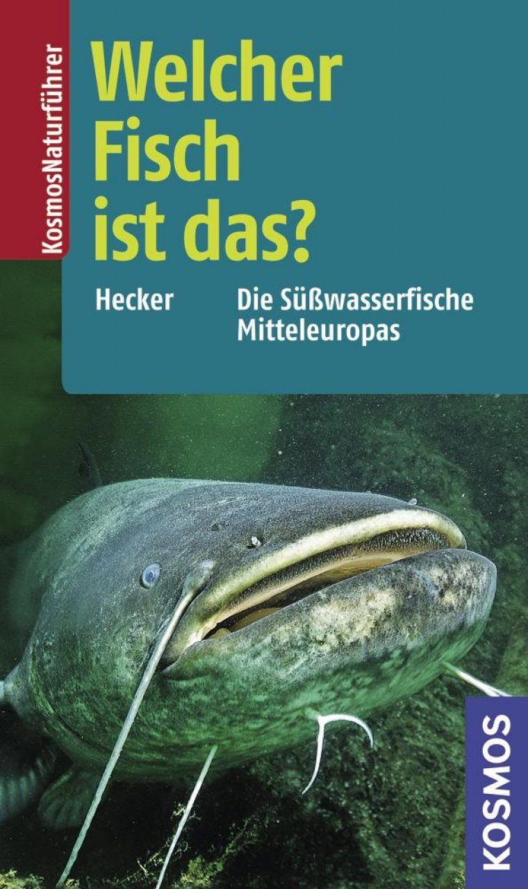 Welcher Fisch ist das?: Die Susswasserfische Mitteleuropas [What Fish is That?: The Freshwater Fish of Central Europe]