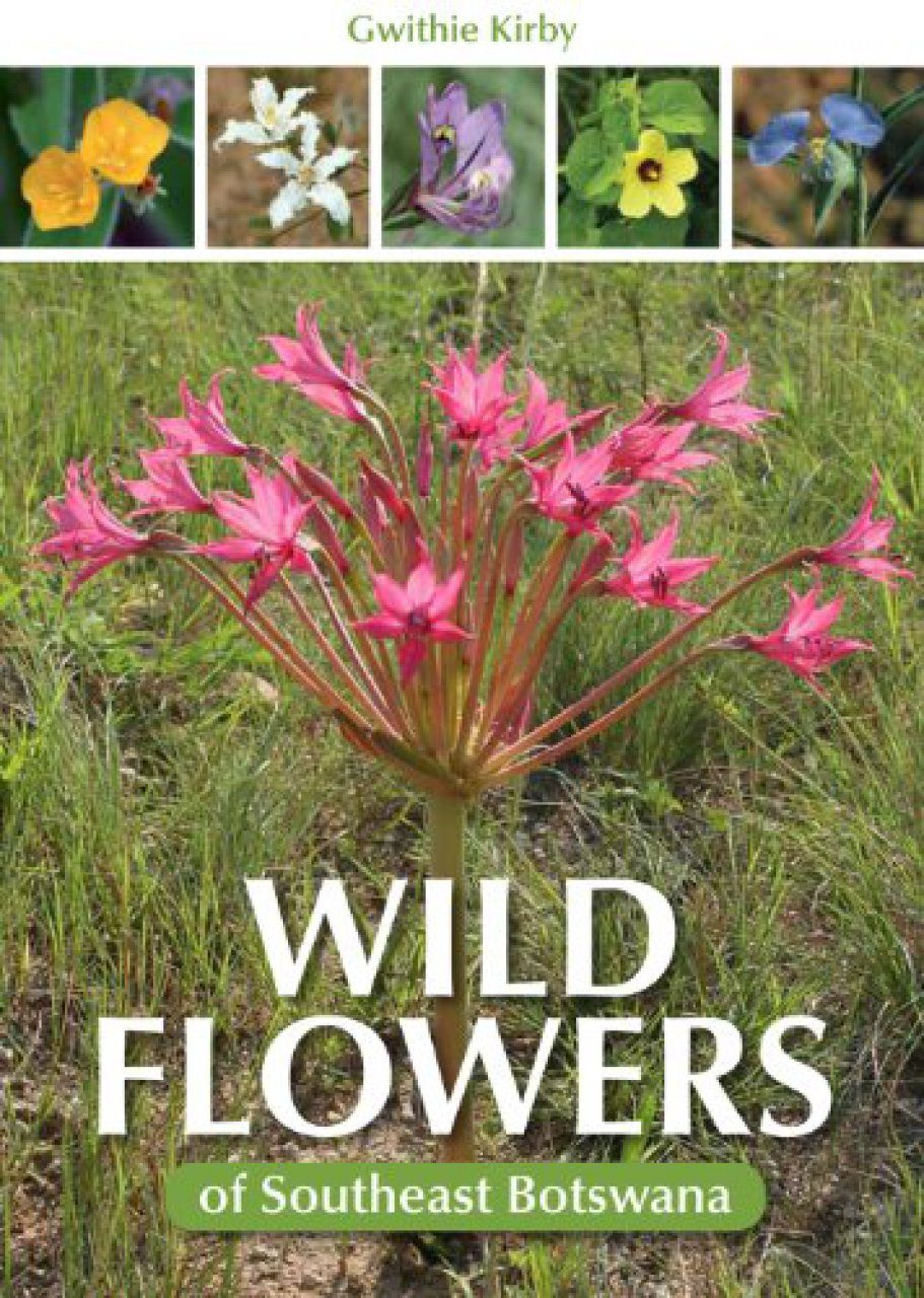 Wild Flowers of Southeast Botswana   NHBS Field Guides & Natural ...
