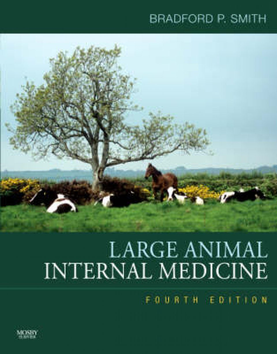 Large Animal Internal Medicine