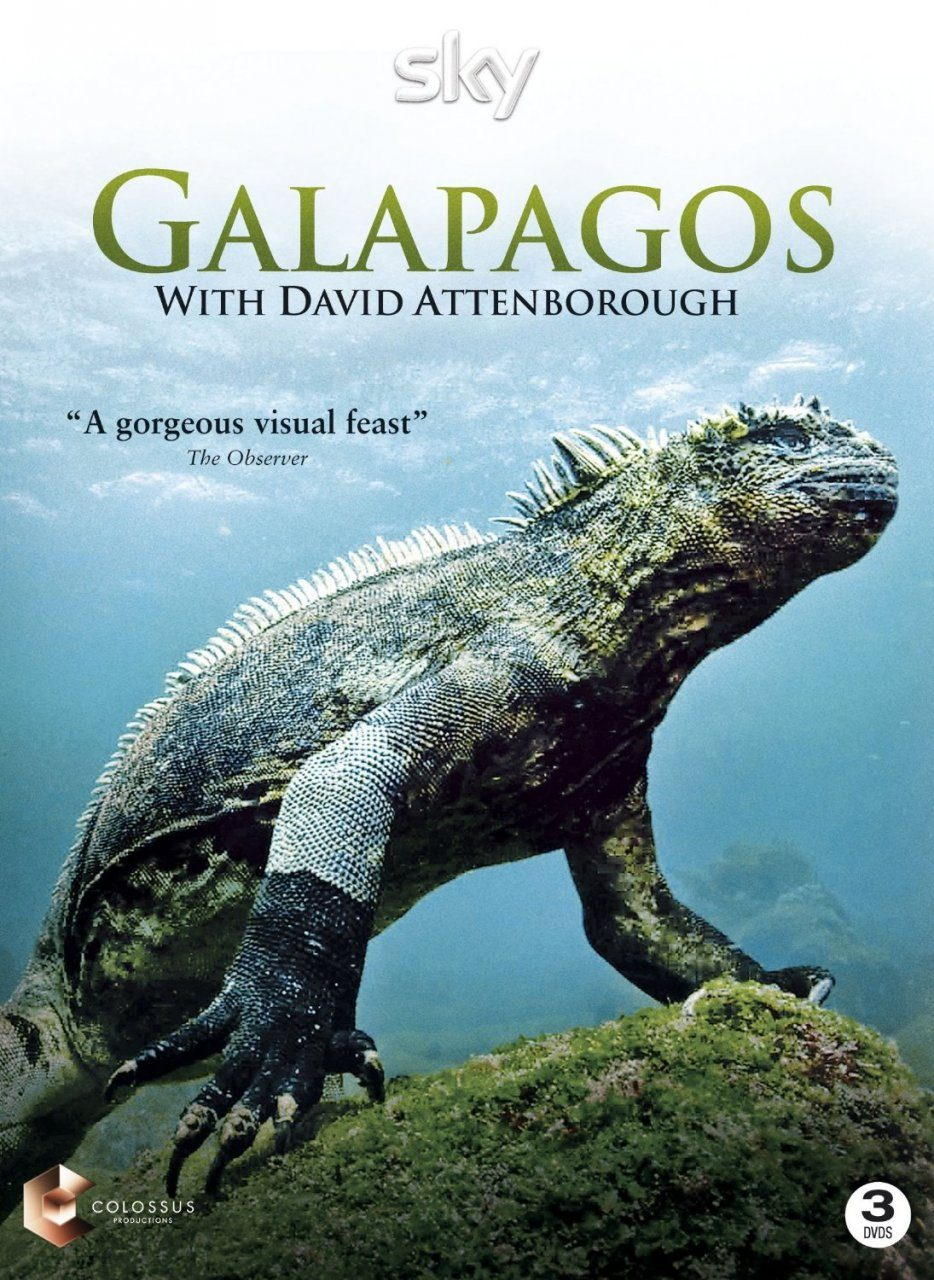 Galapagos with David Attenborough (All Regions)