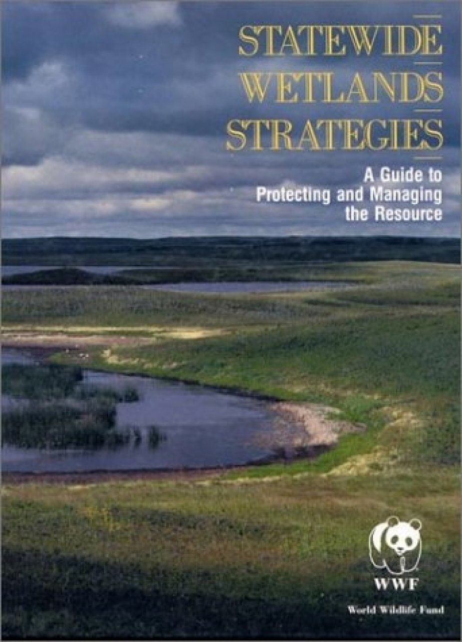 Statewide Wetlands Strategies