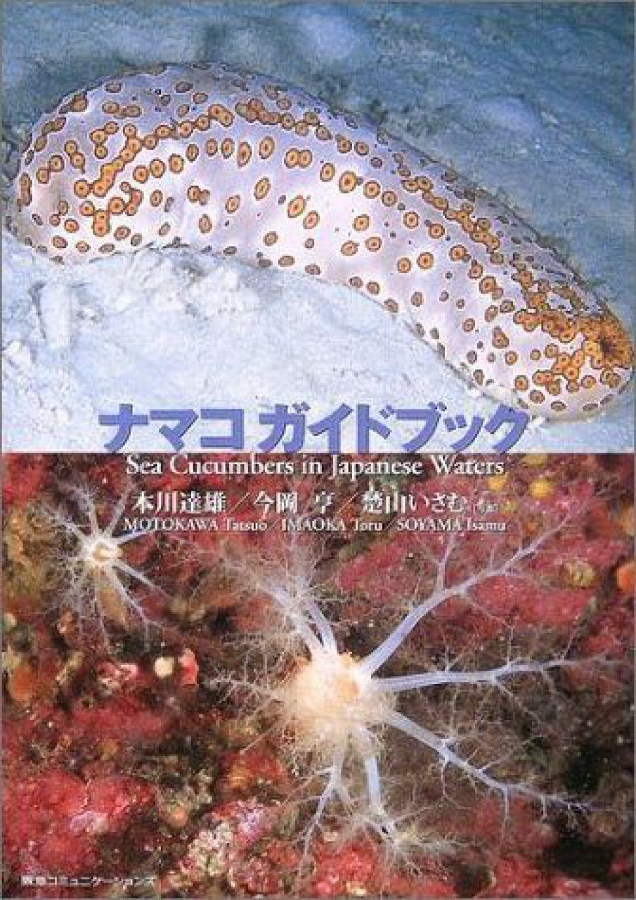 Namako Gaidobukku [Sea Cucumbers in Japanese Waters]