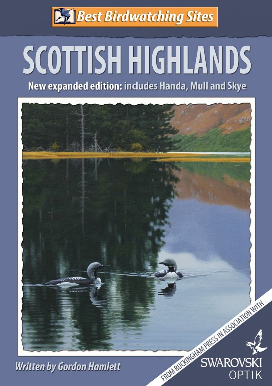 Best Birdwatching Sites: Scottish Highlands