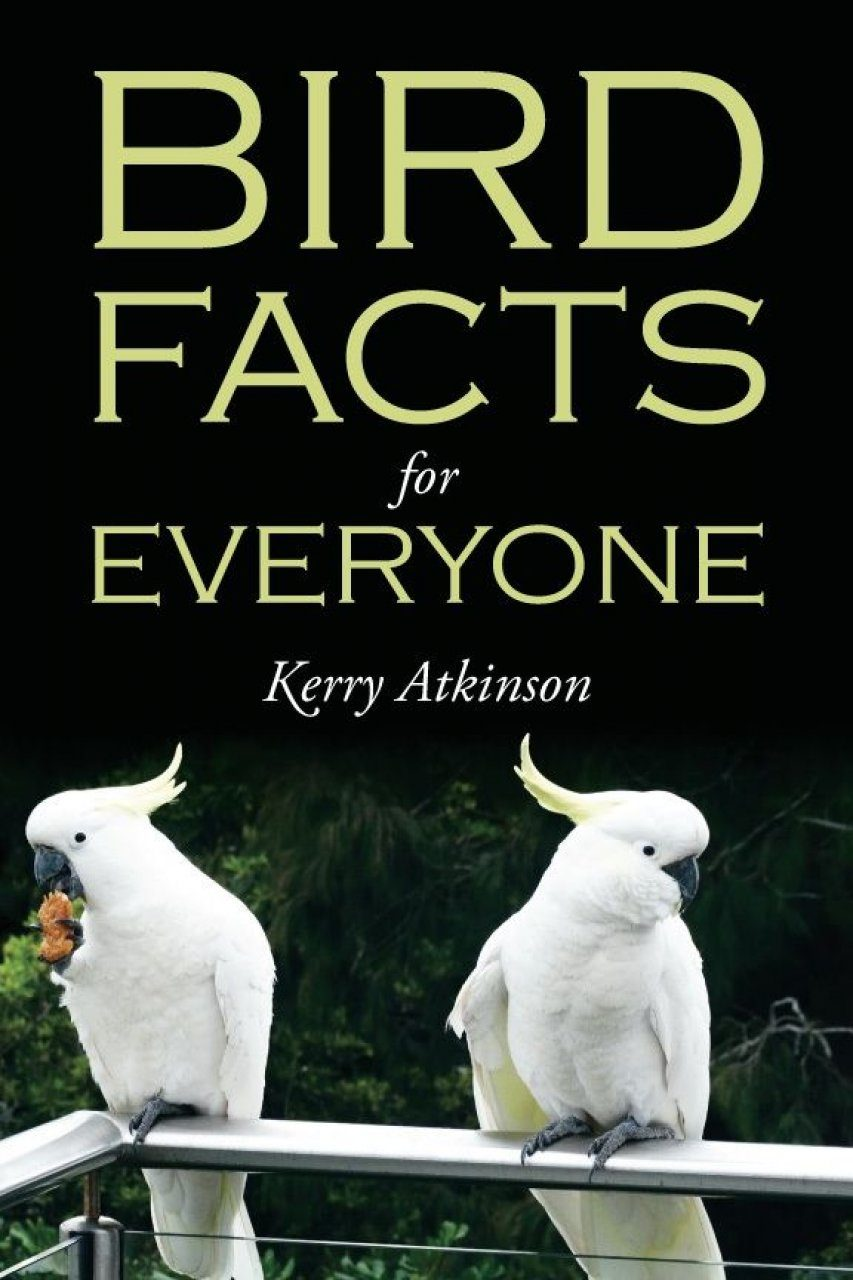 Bird Facts for Everyone