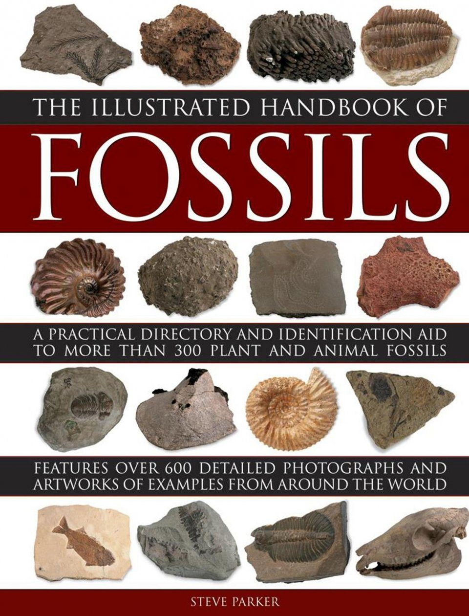 The Illustrated Handbook of Fossils