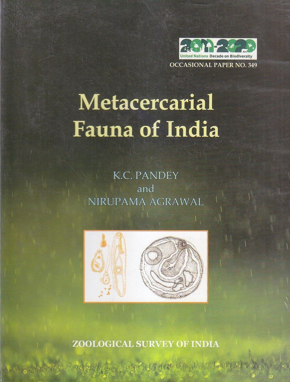 Metacercarial Fauna of India