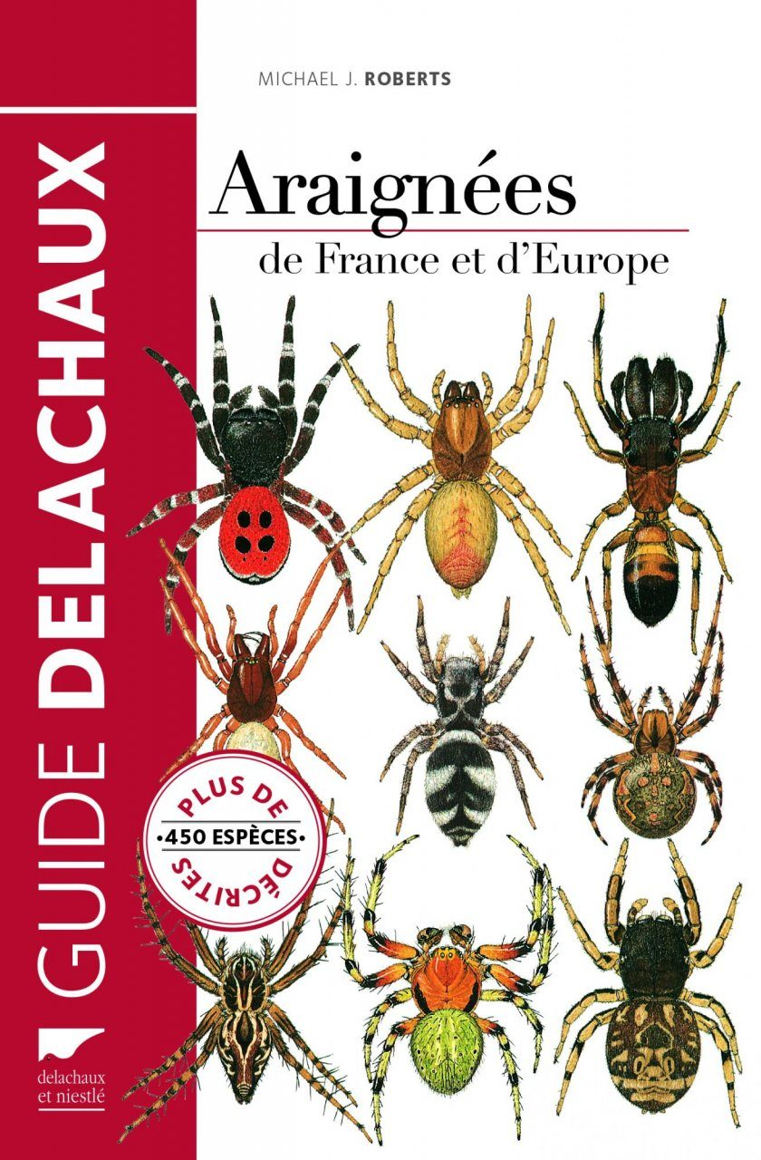 Araignées de France et d'Europe [Spiders of France and Europe]