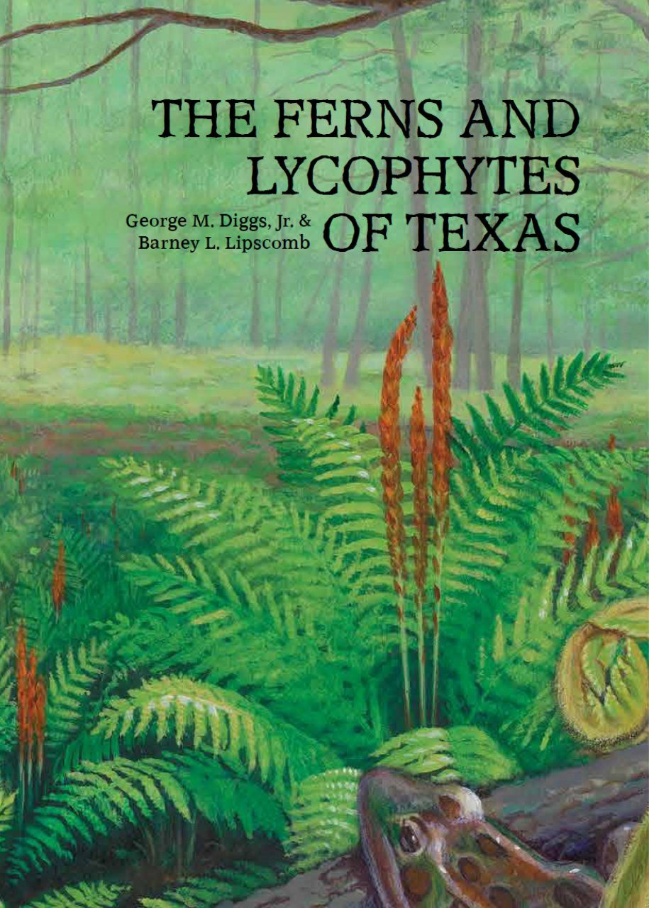 The Ferns and Lycophytes of Texas