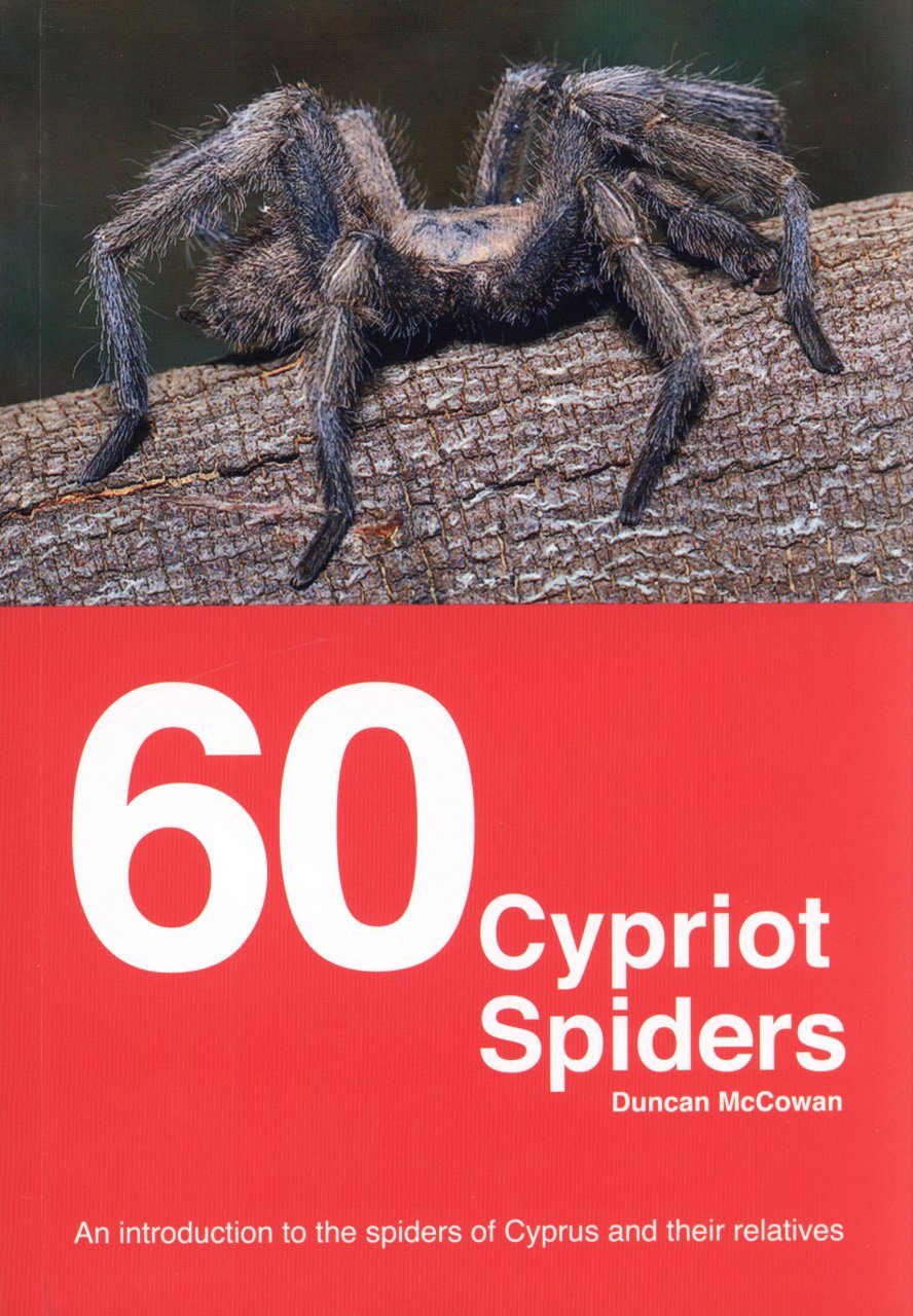 60 Cypriot Spiders