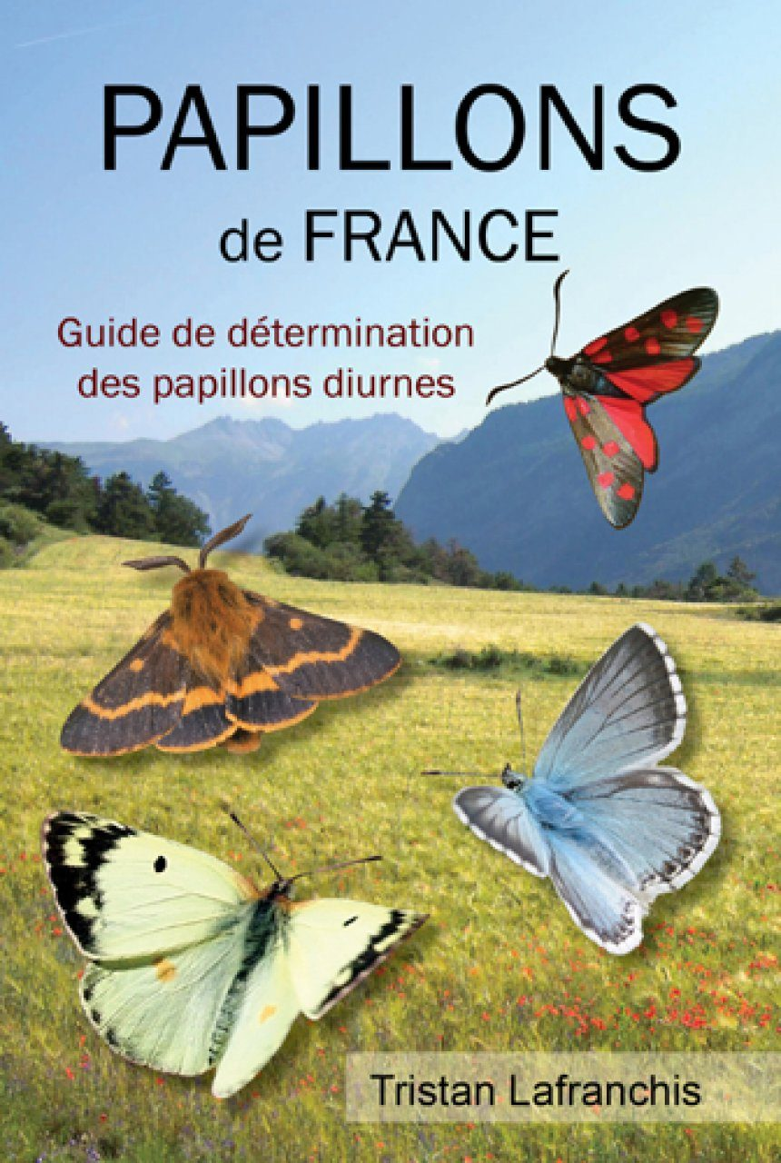 Papillons de France [Butterflies of France]