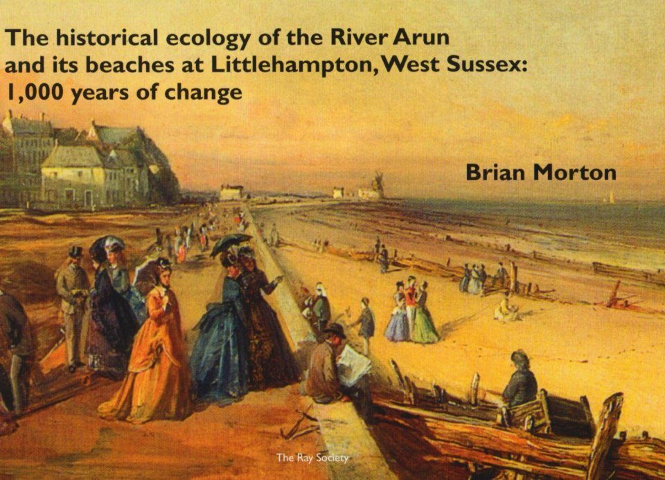 The Historical Ecology of the River Arun and Its Beaches at Littlehampton, West Sussex