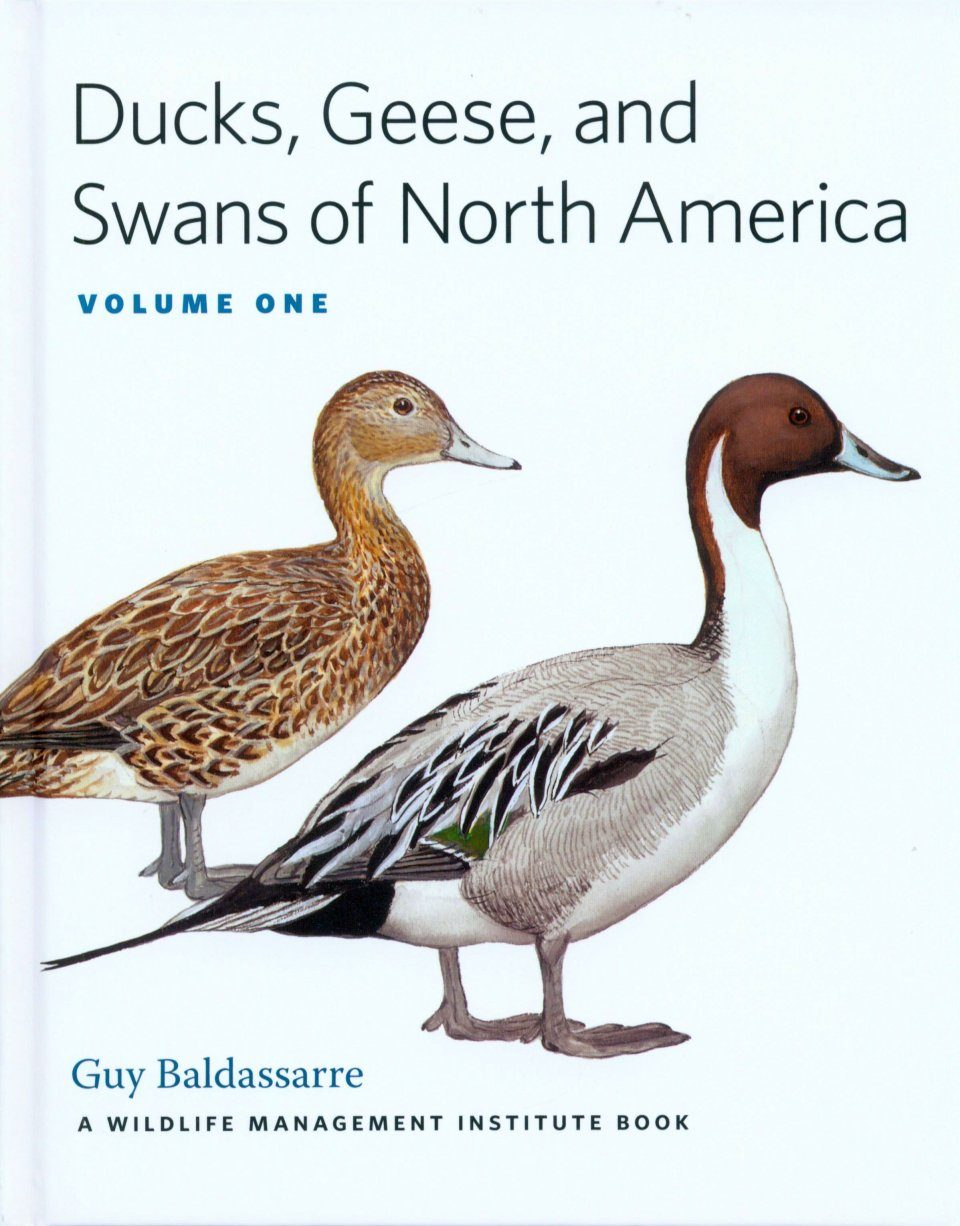 Geese And Swans Of North America 2 Volume Set