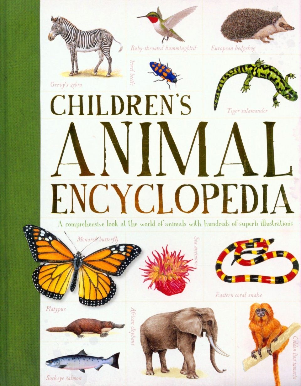 children u0027s encyclopedia of animals philip whitfield nhbs book shop