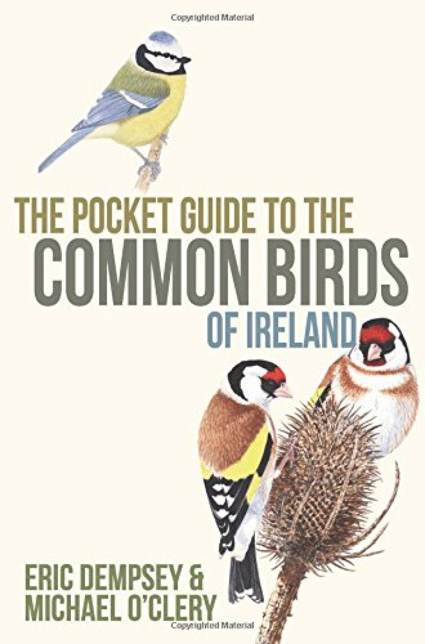 The Pocket Guide to the Common Birds of Ireland
