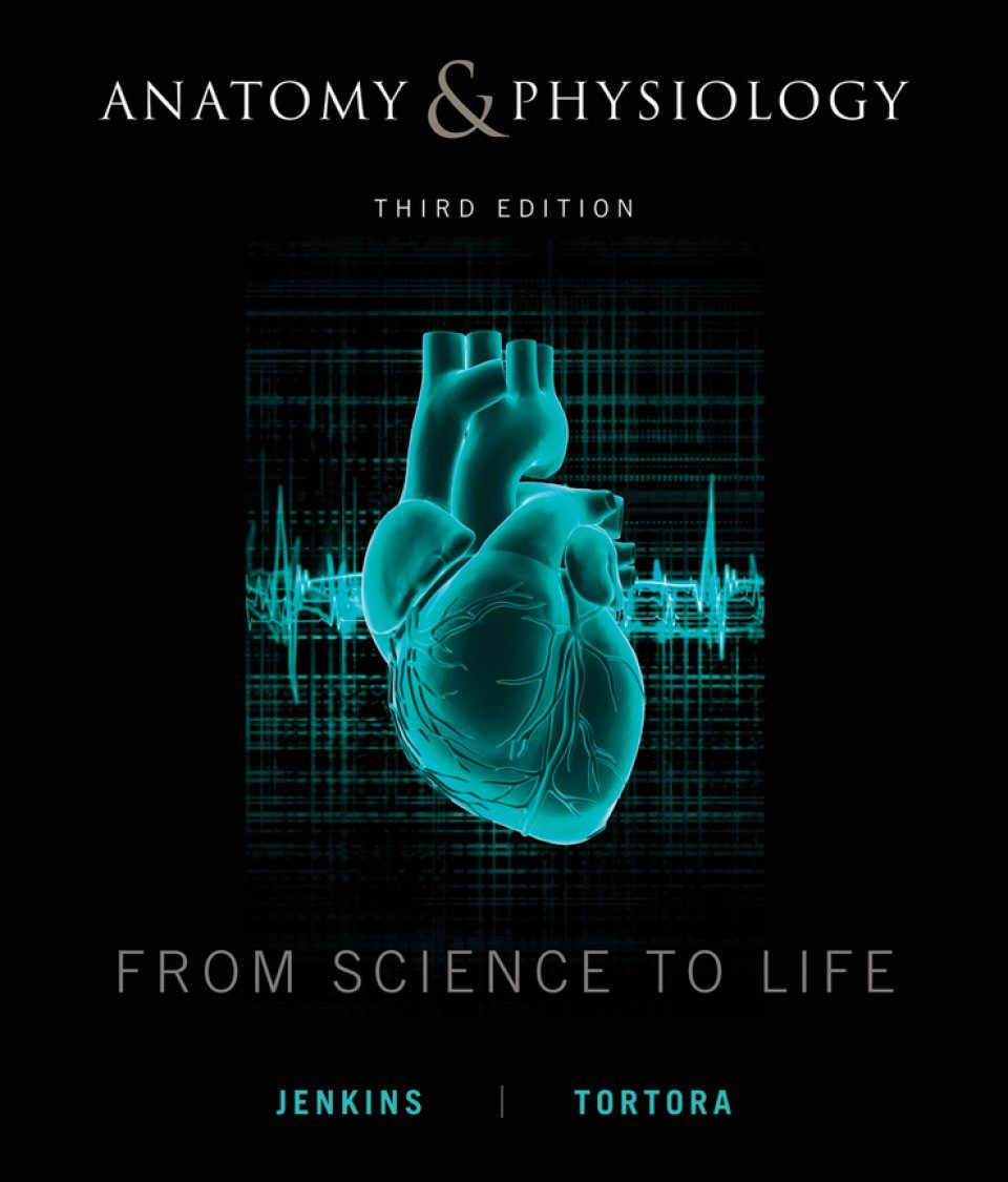 Anatomy & Physiology: From Science to Life: Gail Jenkins, Gerard J ...