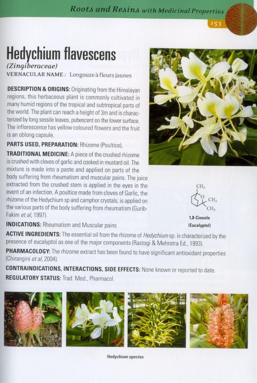 Medicinal Plants Of Mauritius And Of The World Nhbs Academic