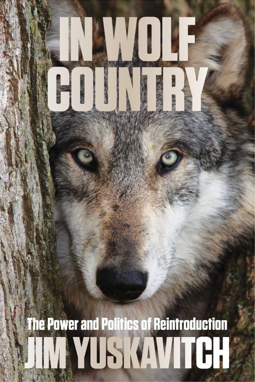 In Wolf Country