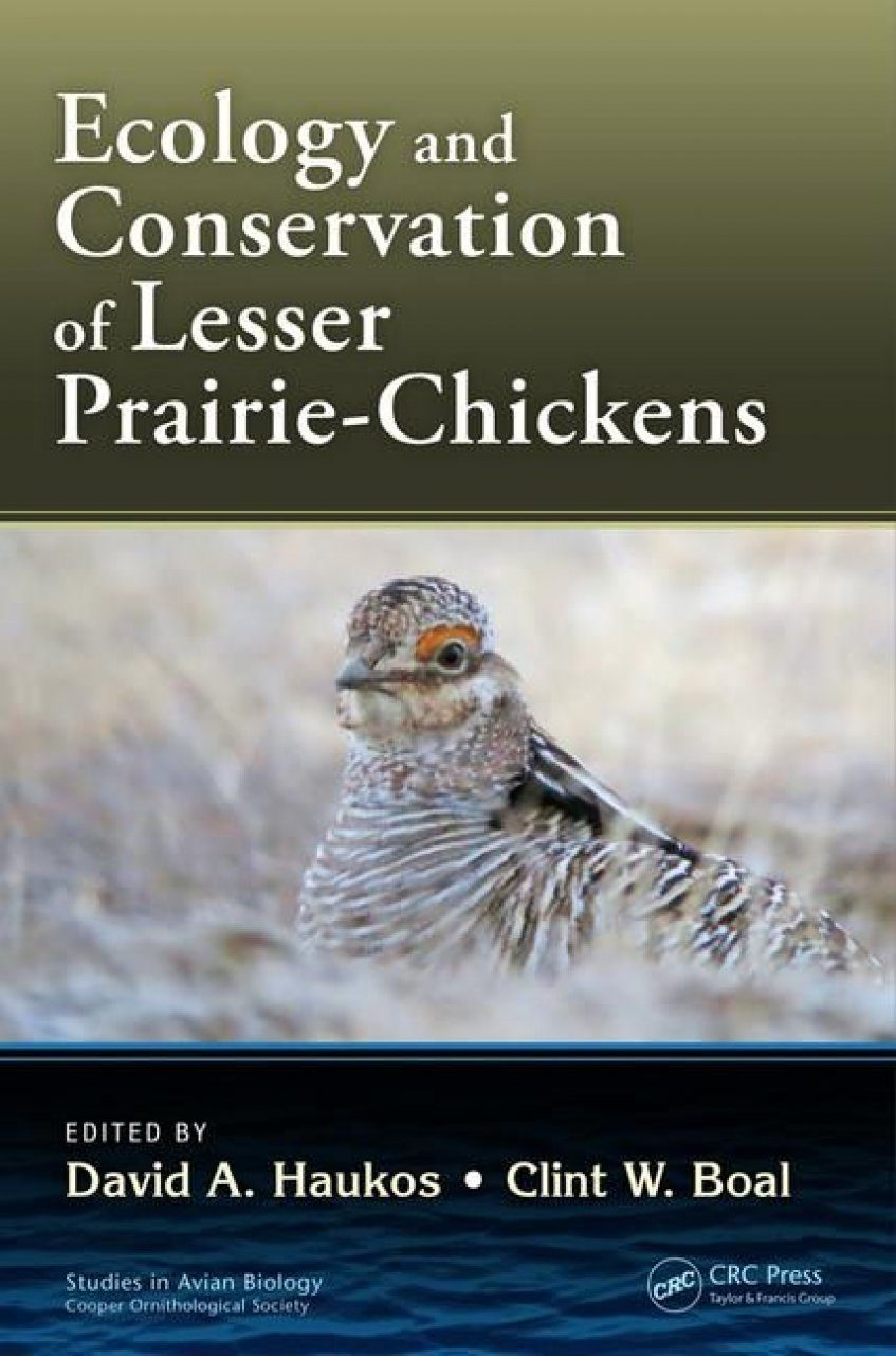 Ecology And Conservation Of Lesser Prairie Chickens Nhbs