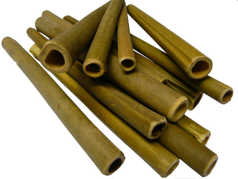 Wooden Bee Nesting Tubes (Pack of 50)