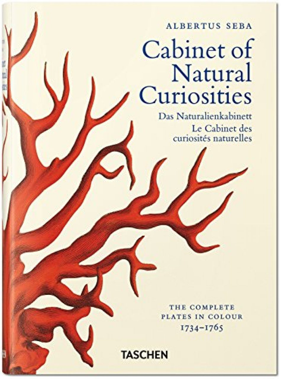 Albertus Seba: Cabinet of Natural Curiosities / Das Naturalienkabinett / Le Cabinet des Curiousités Naturelles [Mini Edition]