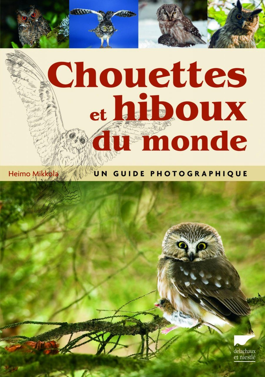 Chouettes et Hiboux du Monde: Un Guide Photographique [Owls of the World: A Photograpic Guide]