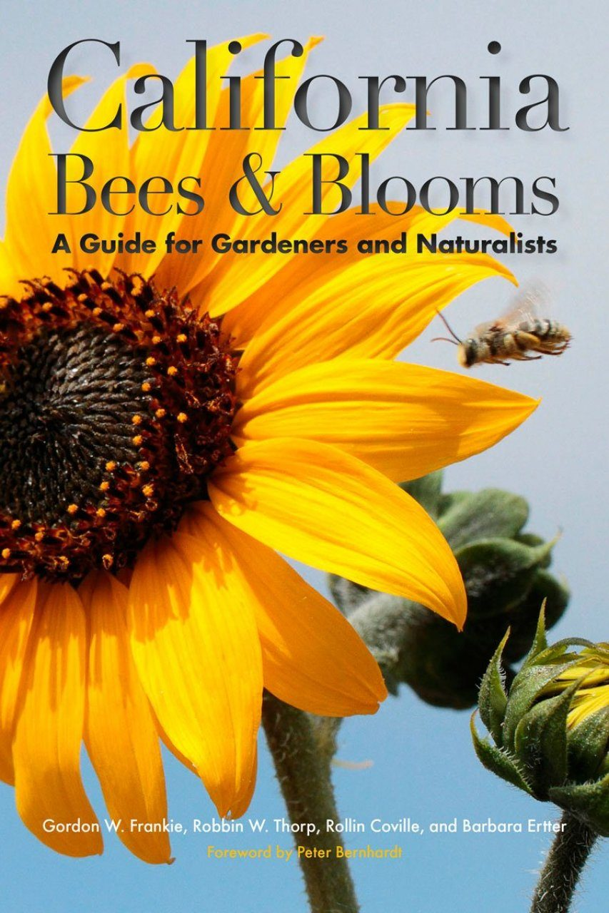 California Bees & Blooms