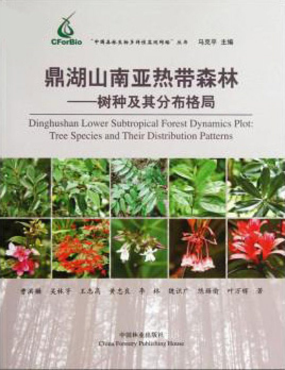 Dinghushan Lower Subtropical Forest Dynamics Plot [Chinese]