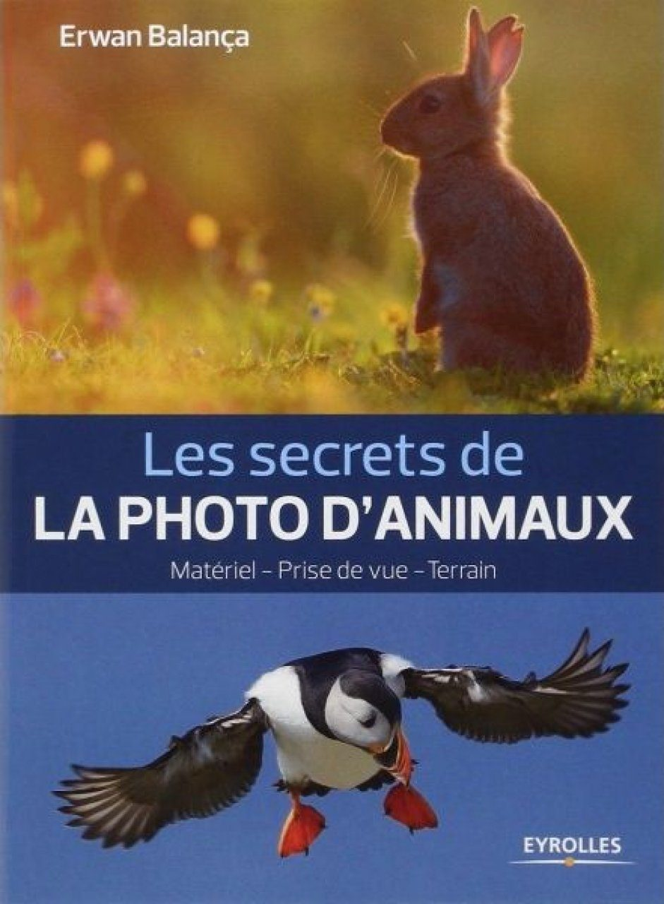 Les Secrets de la Photo d'Animaux