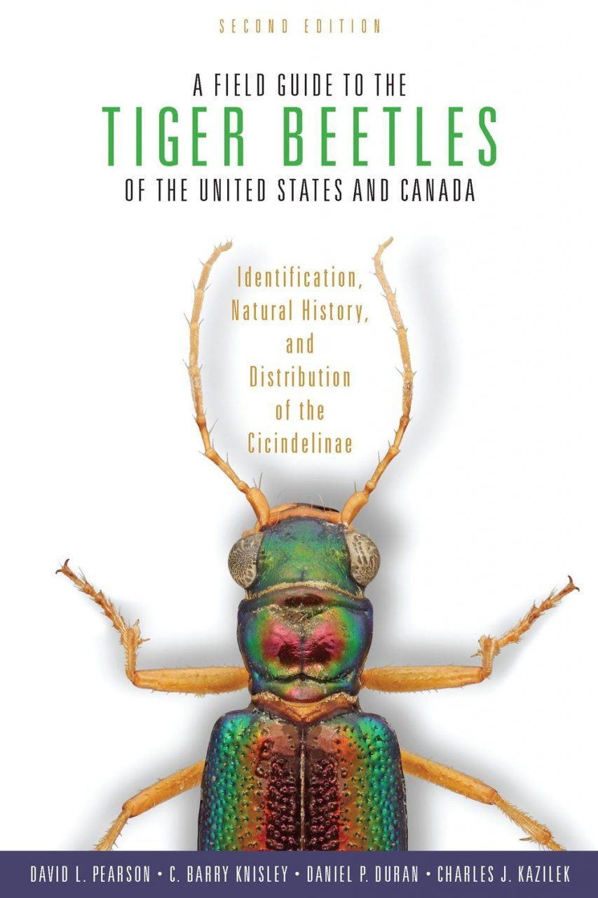 A Field Guide to the Tiger Beetles of the United States and Canada