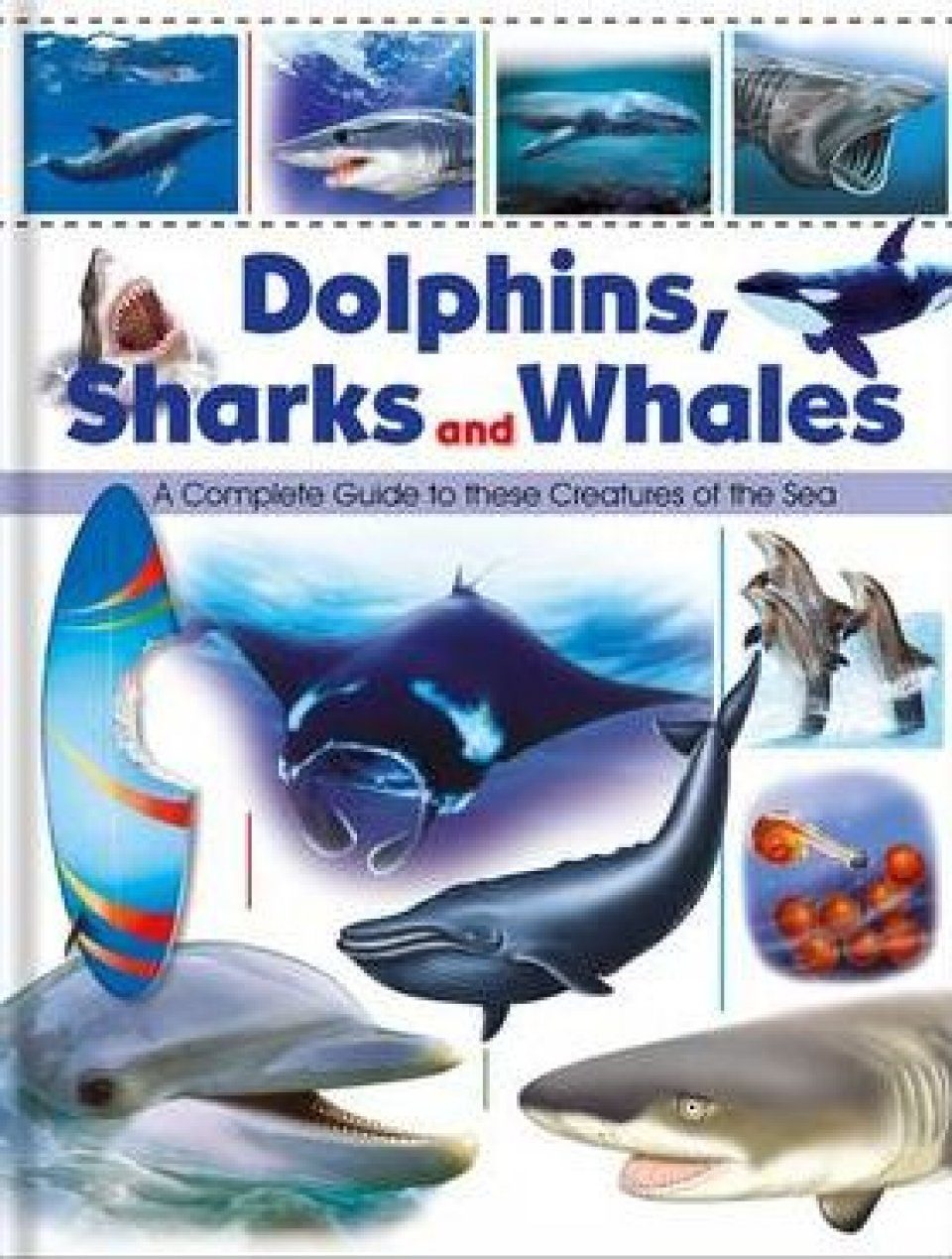 Dolphins, Sharks and Whales