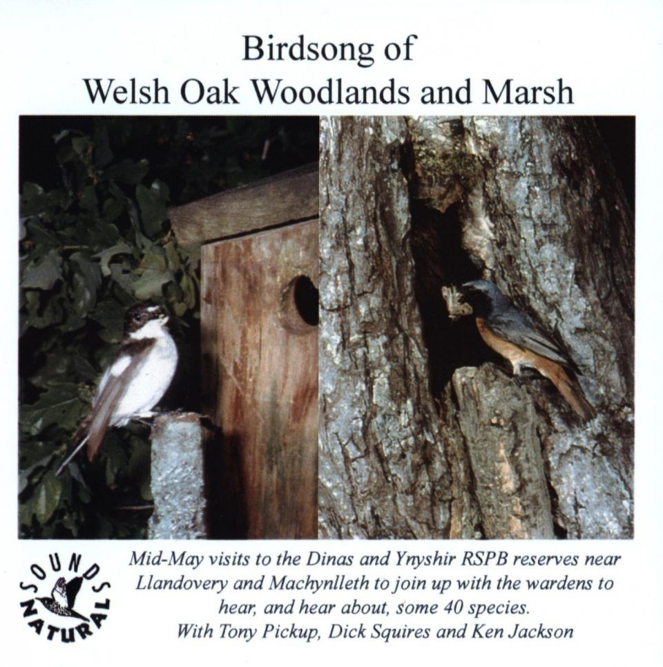 Birdsong of Welsh Oak Woodlands & Marsh