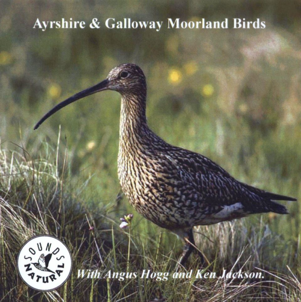 Ayrshire & Galloway Moorland Birds