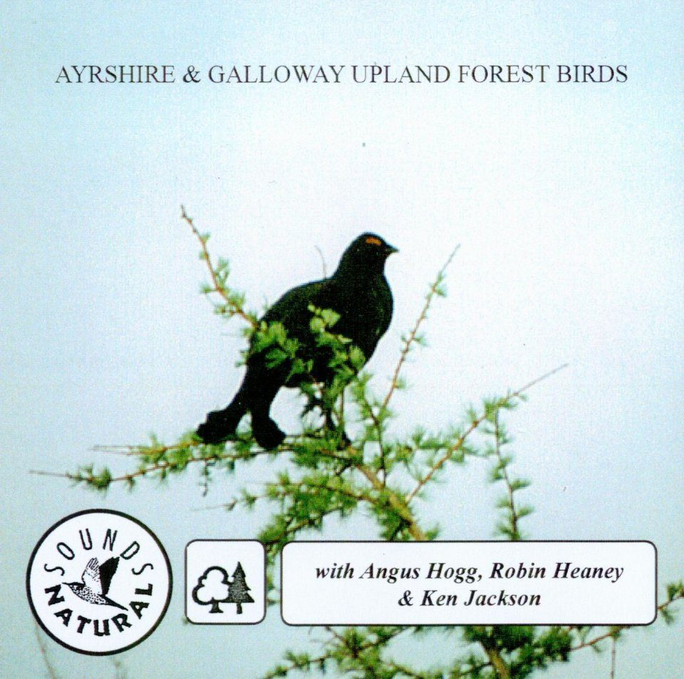 Ayrshire and Galloway Upland Forest Birds