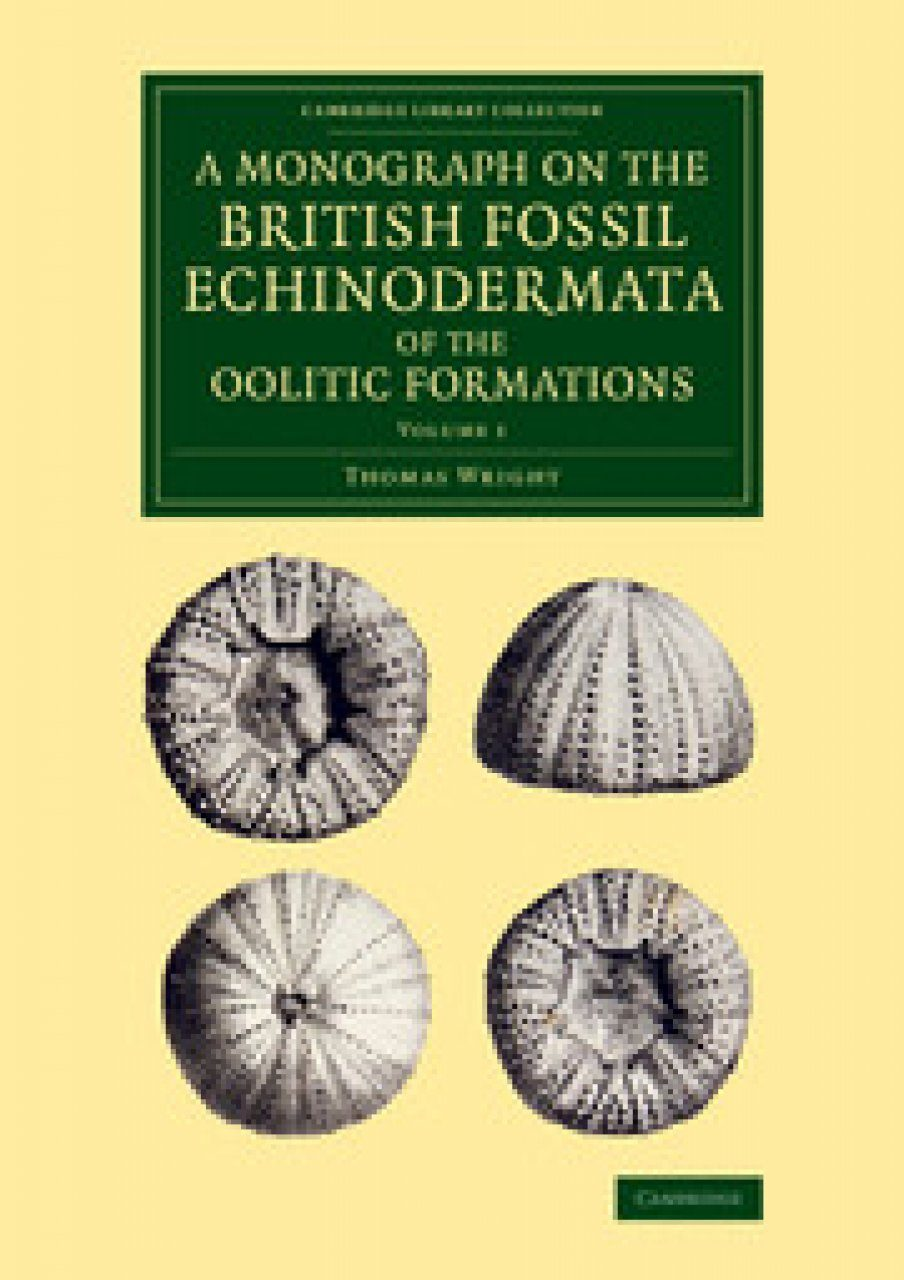 A Monograph on the British Fossil Echinodermata of the Oolitic Formations, Volume 1