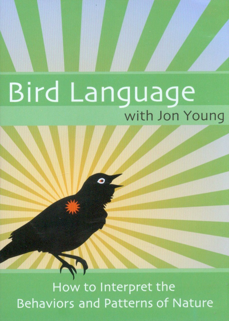 Bird Language: How to Interpret the Behaviors and Patterns of Nature (All Regions)